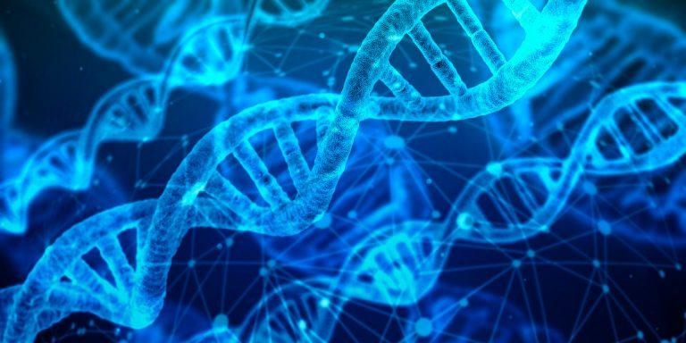 Maioria dos doentes oncológicos nunca ouviu falar nas mutações BRCA